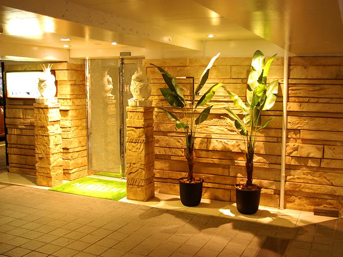 観葉植物が飾られた玄関